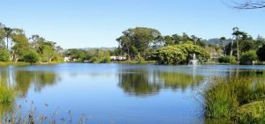 Enjoy natural beauty and great climate in Monterey.