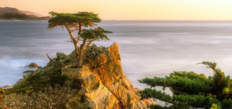 Pebble Beach movers - a view of the coast in Pebble Beach