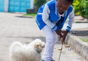Child playing with the dog